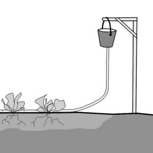 Automatic Irrigation | SSWM - Find tools for sustainable sanitation