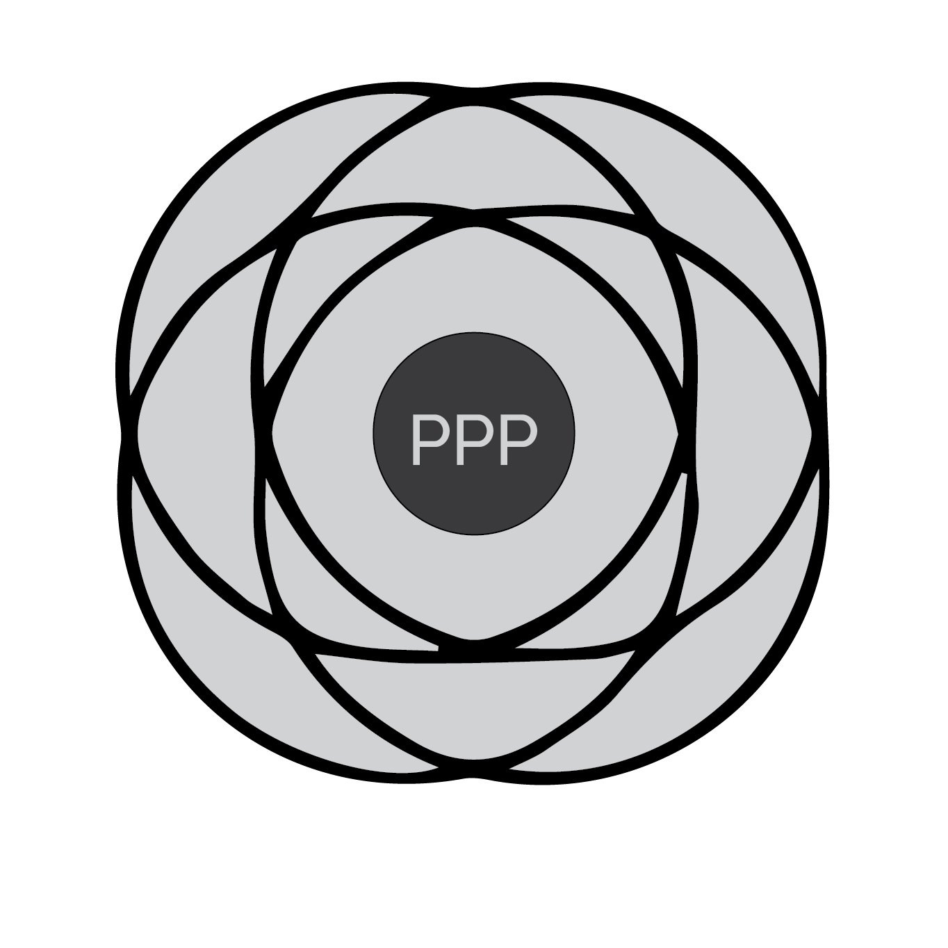 how to develop PPPs