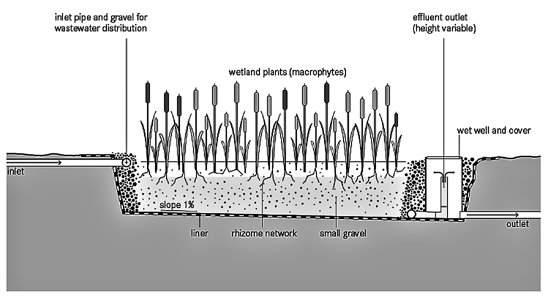 Horizontal Subsurface Flow Constructed Wetland | SSWM - Find tools for  sustainable sanitation and water management!Sustainable Sanitation and Water Management Toolbox