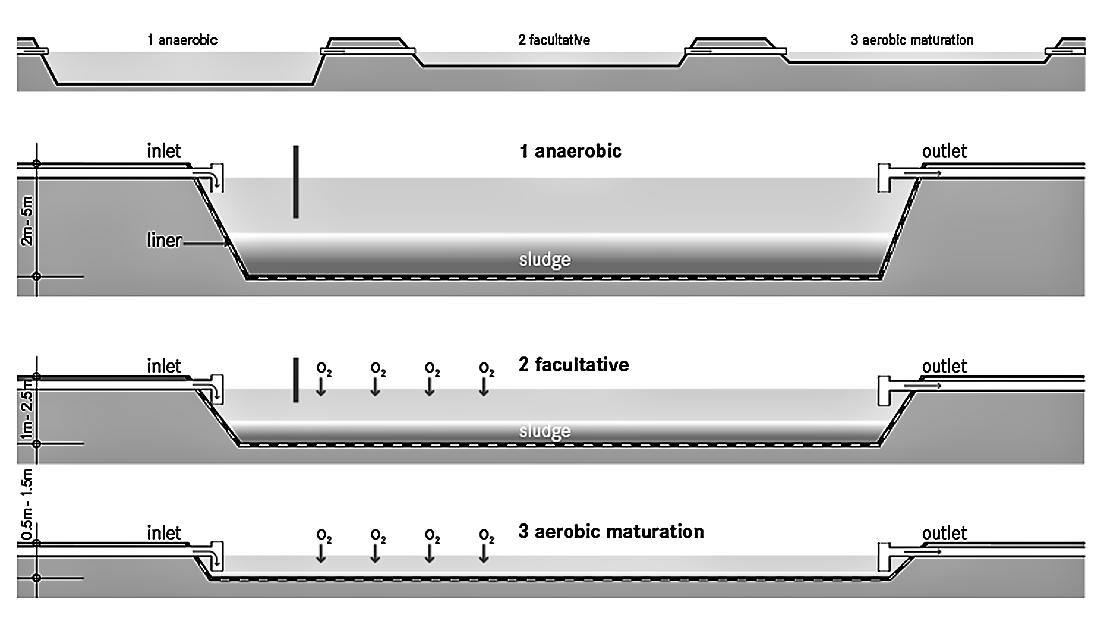 Waste Stabilization Ponds (WSP) | SSWM - Find tools for
