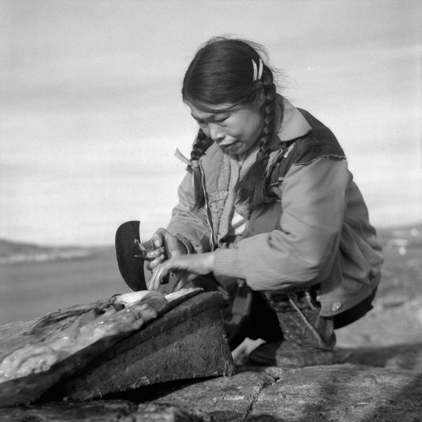 Source: Rosemary Gilliat/National Film Board of Canada (august 1960), Taktu Cleaning Fat from Seal Skin with an Ulu. License: Creative Commons CC BY 2.0. URL: www.flickr.com