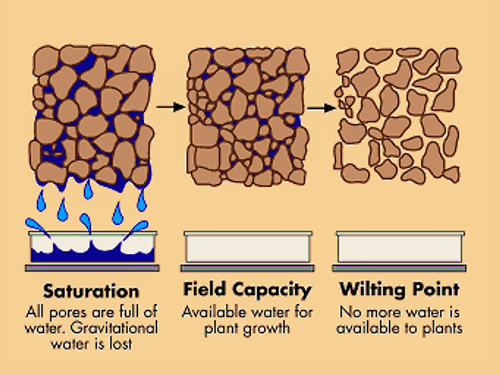 Stages of water holding capacity. Source: BETTER SOILS (n.y.)