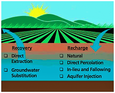 For optimal conjunctive use, recovery and recharge of groundwater needs to be balanced out