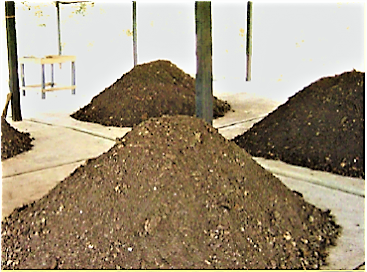 Compost piles in maturation. Source: EAWAG/SANDEC (2008)