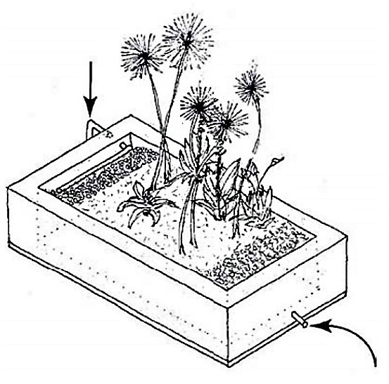 A variety of evaporation bed designs are available and the exact design and measurements depend on the amount and the kind of wastewater to be treated. Source: ECOSAN UE (2007)