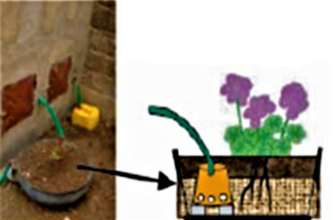 Greywater or anal cleansing water is drained in an inverted tyre planted with flowers. Source: ECOSAN UE (2007)