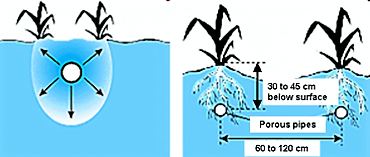 Schematic view of porous pipe irrigation. Source FAO (1997)