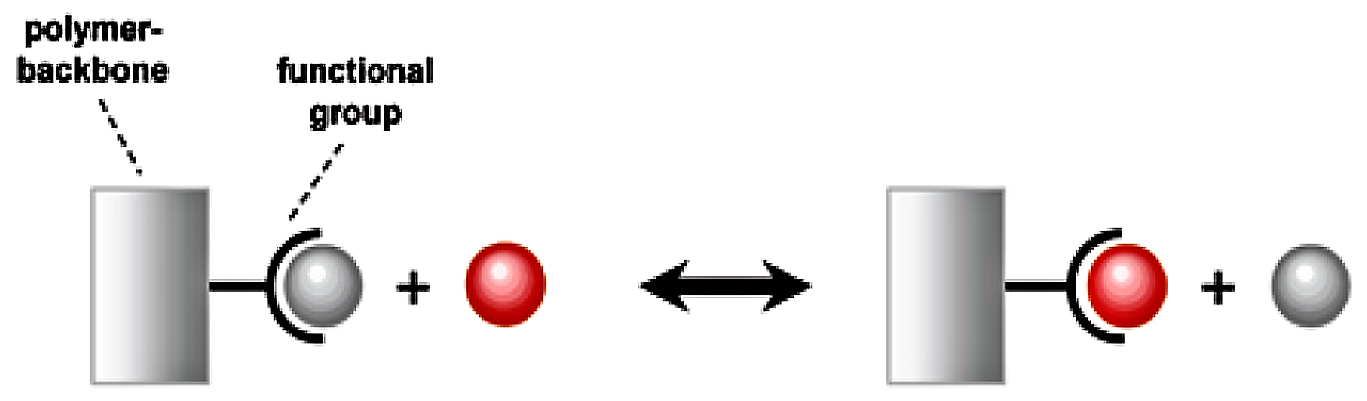 A fixed and a mobile ion are changing places in so-called ion exchange reaction. Source: NEUMANN and FATULA (2009)