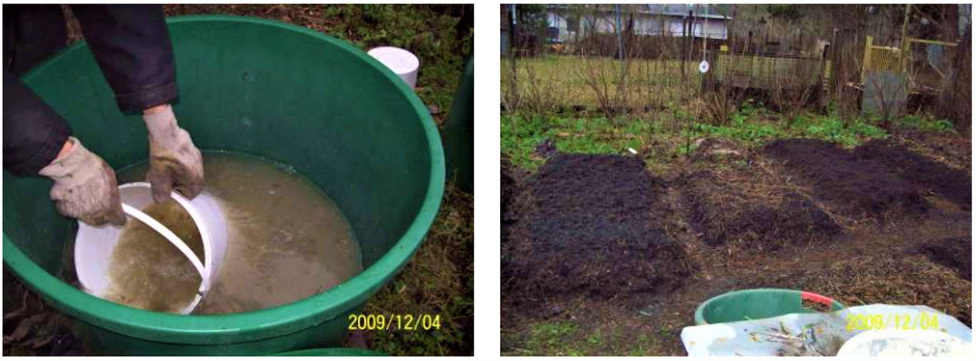 A mixture of bacteria is used for lacto-fermentation of urine (to prevent nitrogen loss) (left). After four weeks of lacto-fermentation, the transformed urine is added to vermicompost heaps prepared from garden waste (right) to increase the nutrient and humic acid content of the terra preta compost. Source: OTTERPOHL (n.y. b)