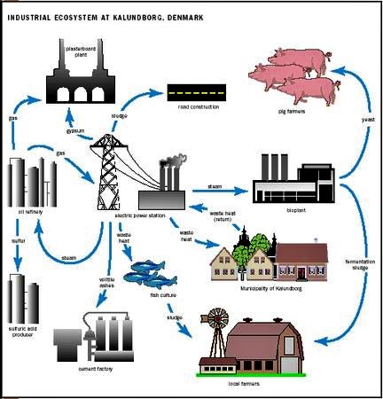 Industrial Ecosystem at Kalundborg, Denmark. Source: POLLUTION ISSUES (2010)