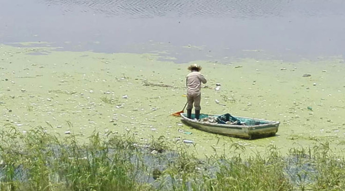 High Pollution in Guadalupe Lake, México. Source: PUNTO MEDIO 2017