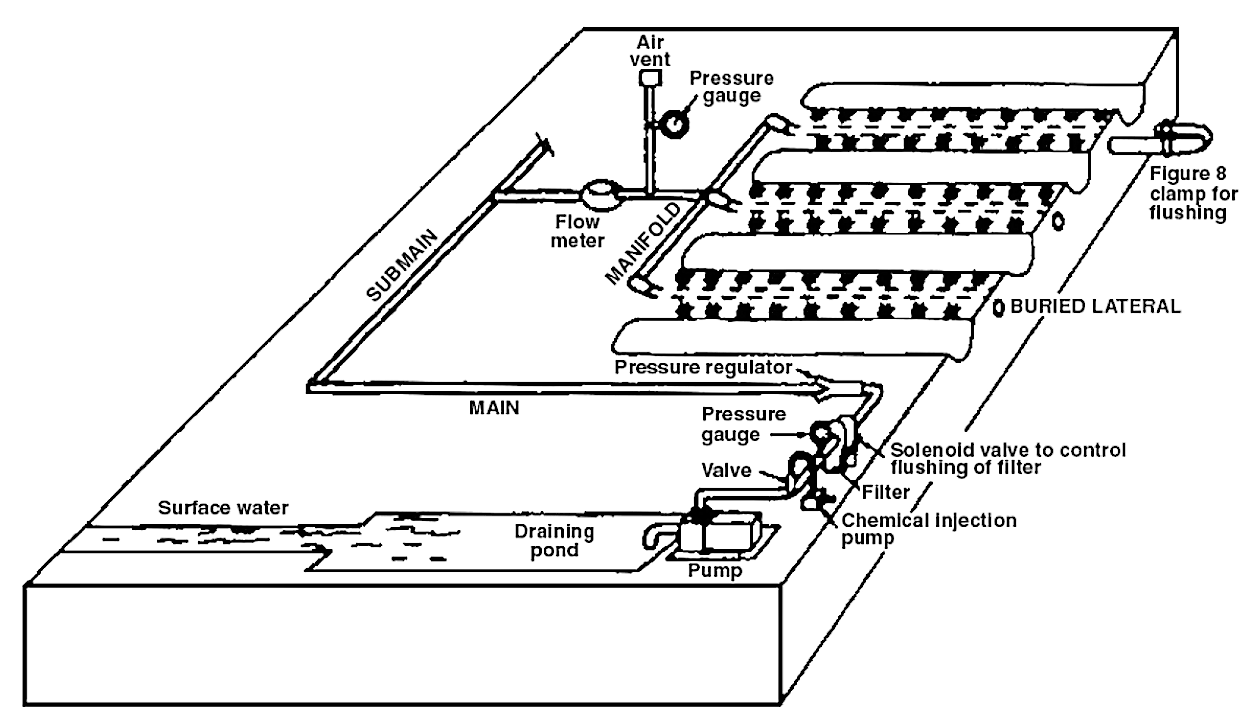 A typical subsurface drip irrigation field layout. Source: REICH et al. (2009)