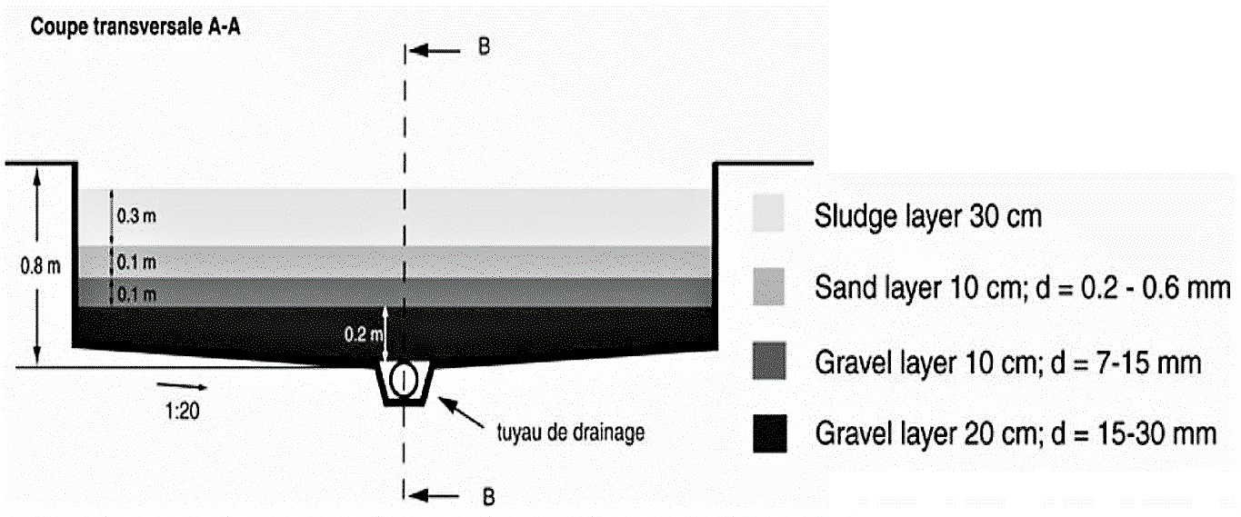 Crosscut of an unplanted drying bed. Source: STRAUSS & MONTANGERO (2002)