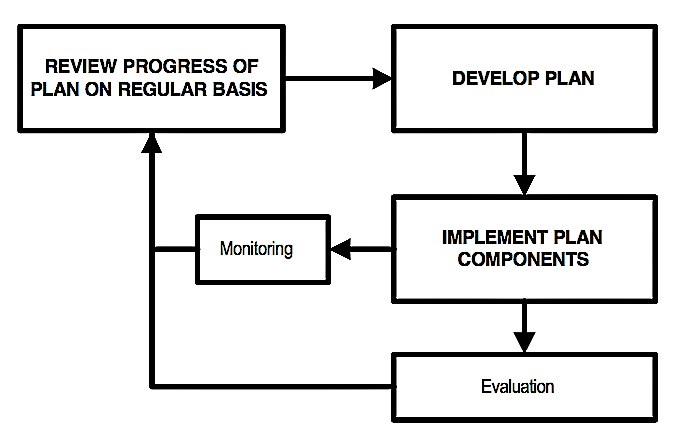 Links between planning and implementation. Note the importance that it gives to monitoring and evaluation of plan outcomes and the use of that information to review progress with the plan and evaluate its effect from time to time. Source: TAYLER et al. (2000)
