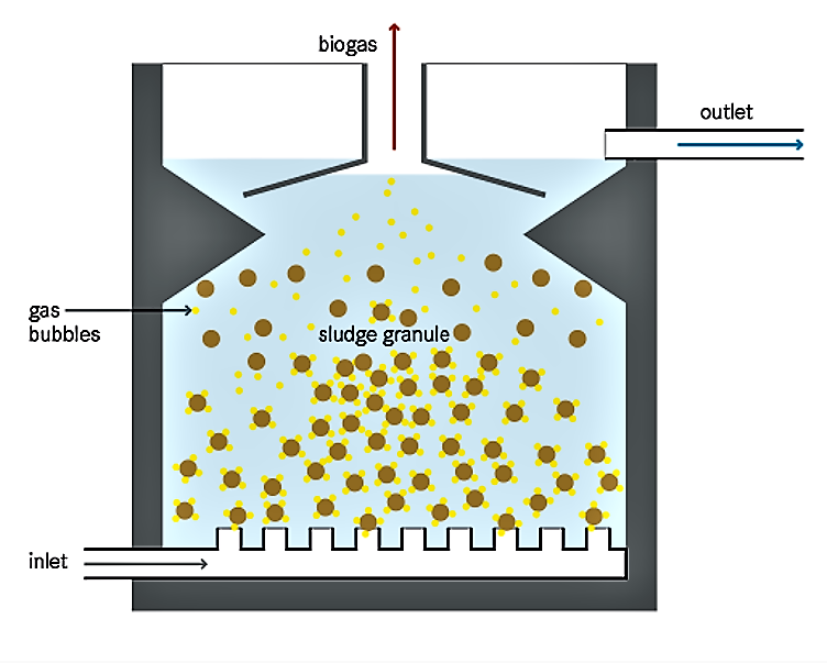 Cross-section of an Upflow Anaerobic Sludge Blanket (UASB) reactor. Source: TILLEY et al. (2014)