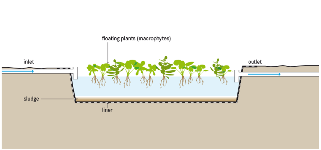Floating Plant Pond. Source: TILLEY et al. (2014)