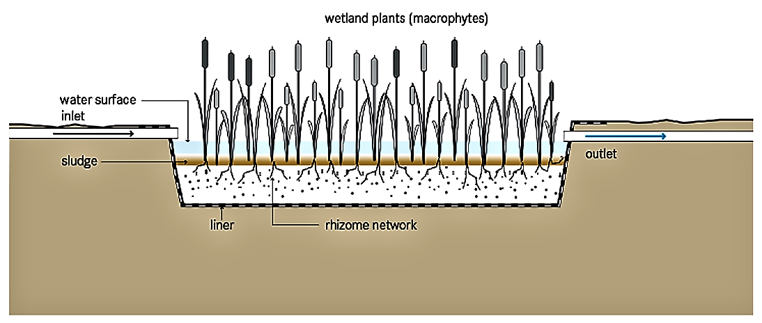 Functional schematic of a free-water surface constructed wetland. Source: TILLEY et al. (2008)