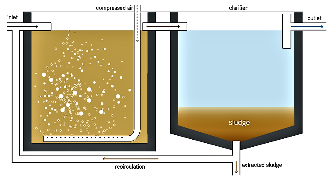 Schematic of the aeration tank and secondary settling tank (clarifier) of an activated sludge system. Source: Tilley et al. (2014)