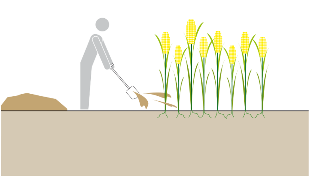 Schematic of the use of compost. Source: TILLEY et al. (2014)
