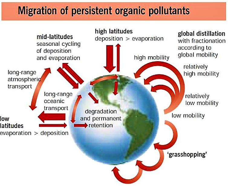 Persistent organic pollutants (POPs) spread via a variety of mechanisms at different latitudes. Source: UNEP (2002)