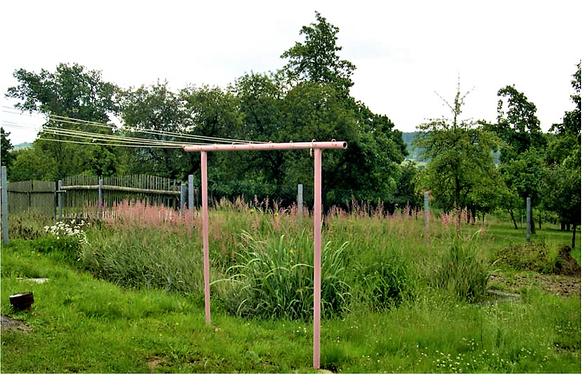 On-site horizontal flow constructed wetland at Struhaře, Czech Republic, planted with Phalarisarundinacea and Iris pseudacorus. Source: VYMAZAL (2010)