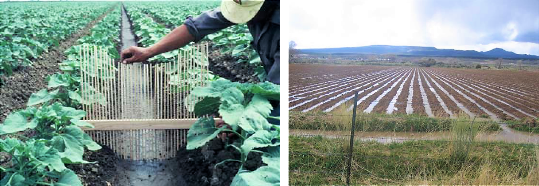 Left: Measuring of a single furrow shape. Right: A field irrigated by furrows. Source: WALKER (2003) and HILL et al. (2008)