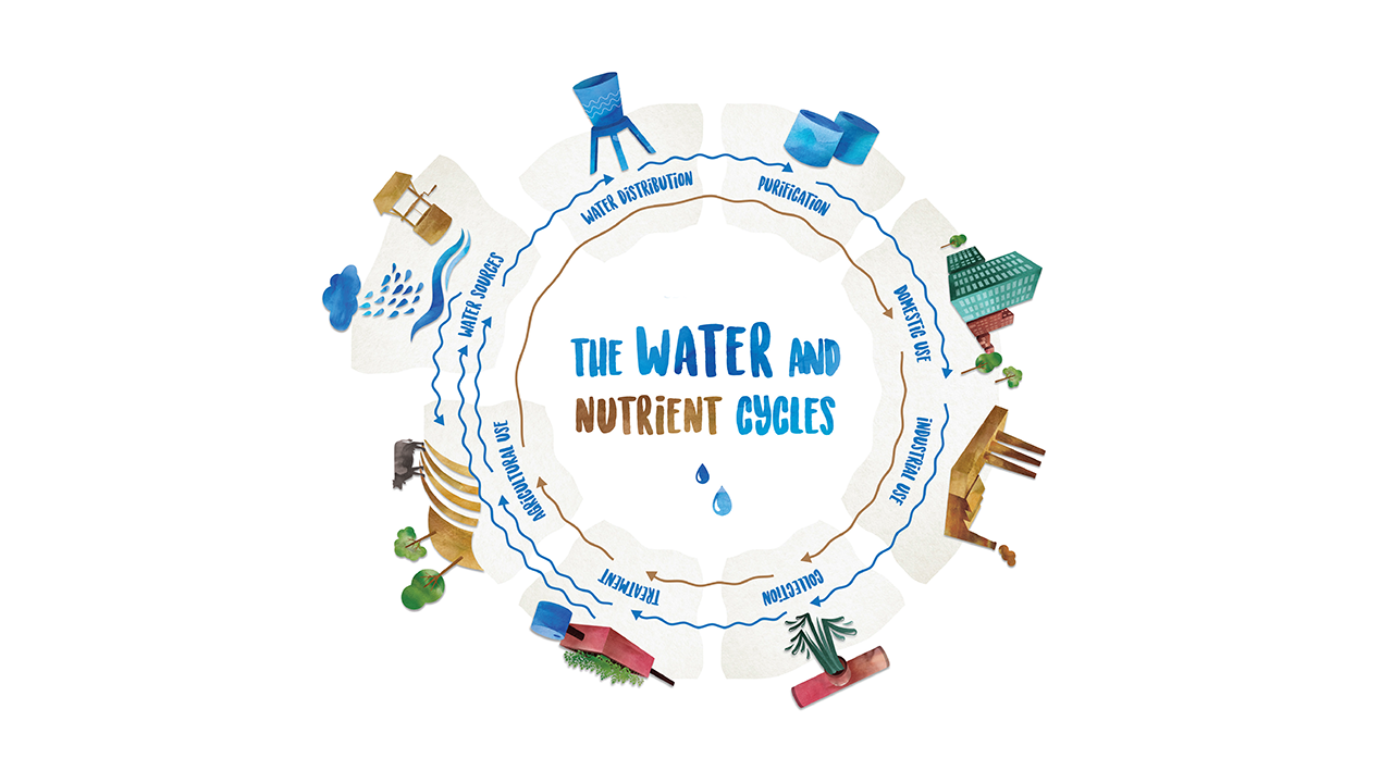 Water and Nutrient Cycle