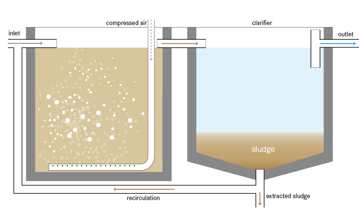 Design Of Completely Mixed Activated Sludge System