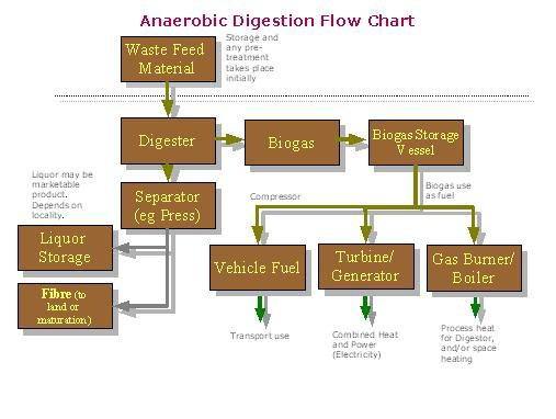 Anaerobic Digestion Organic Waste Sswm