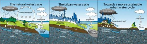 Influences on the water cycle in cities through sealed surfaces. Source: AUCKLAND CITY COUNCIL 2010