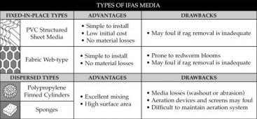 Different types of IFAS media. Source: BRENTWOOD (2009)