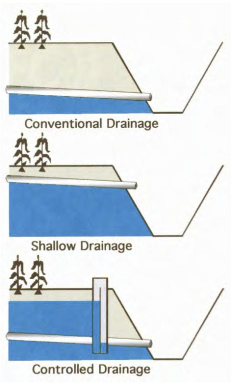 Controlled drainage sswm for Surface drainage system design