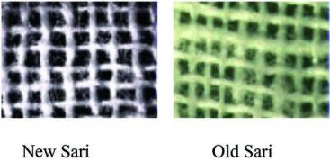 Comparison of electron micrographs of a single layer of New and Old sari. Source:COLWELL et al. (2002)