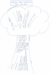 "Problem Tree on Sanitation, as drawn by the Khatgal Community in Northern Mongolia. The ""roots"" of the tree show the roots of the problems, the stem is dedicated to the problems themselves and the crown shows the consequences of these problems (CONRADIN 2007)"