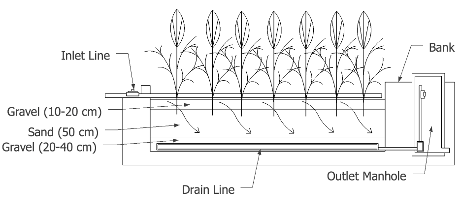 Vertical Flow Constructed Wetland (VFCW) | SSWM