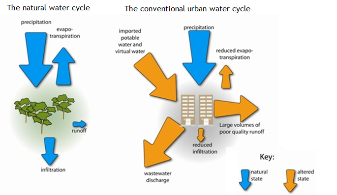 Major differences between the natural water cycle and the conventional urban water cycle. Source HEALTHY WATERWAYS 2011