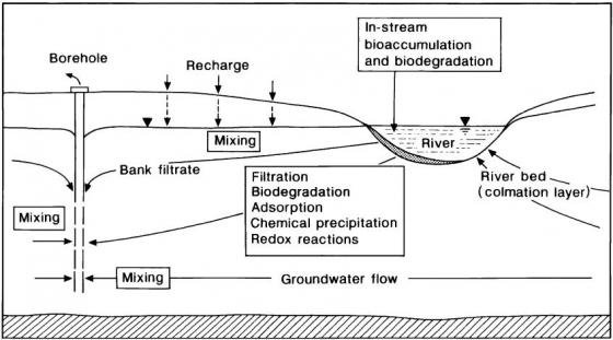 Schematic diagram of processes affecting water quality during the bank filtration process. Source: HISCOCK & GRISCHEK (2002)