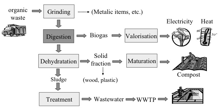 municipal solid waste thesis Municipal solid waste management systems: case studies of dalian city, china and the region of waterloo, canada by xudong chen a thesis presented.
