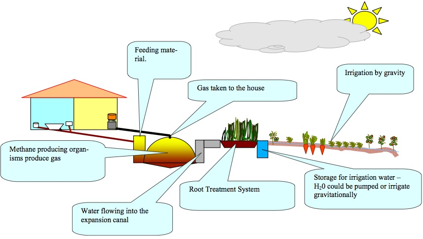 biomass to biogas essay Summary: students build a simple digester to generate a quantity of gas to burn  this demonstrates the small amount of technology needed to generate a.