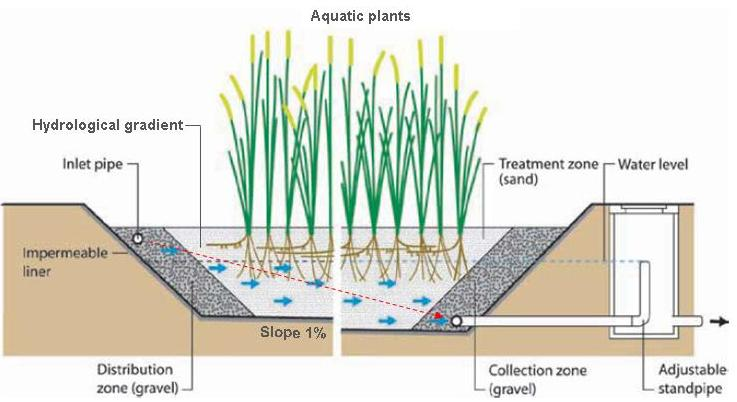 an overview of constructed wetlands environmental consulting firm rh environmentalconsultingohio wordpress com Swamp Soil Layers Diagram Forest Ecosystem Diagram