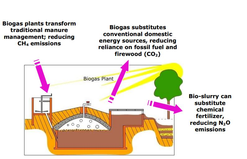 The benefits of agricultural small-scale biogas plants.
