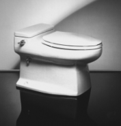 This low-flush toilet from Microphor in Willits, California, uses approximately 4.8 litres of water per flush. Source: PIPLINE (2000)