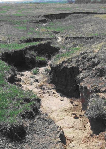 Soil degradation sswm for Example of soil