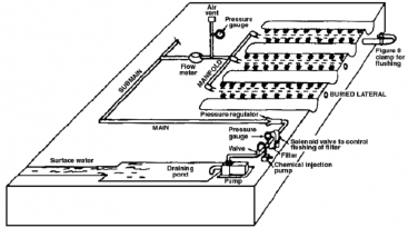 A typical subsurface drip irrigation field layout. Source: REICH (2009)