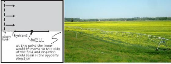 A linear move system irrigates rectangular fields of one by half a mile. It is a common system for very large fields, e.g. in the prairies of Alberta, Canada. Source: SCHERER (2010) and B. STAUFFER (2011)