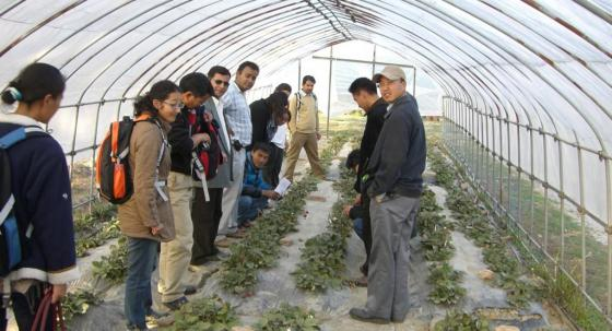 Participants of  a  SSWM course in Buthan visitng a greenhouse. Source: SEECON (2009)