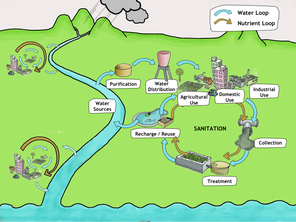 Webinar nutrient cycle with kitchen waste - review | dycle.org |Wastewater Nutrient Cycle