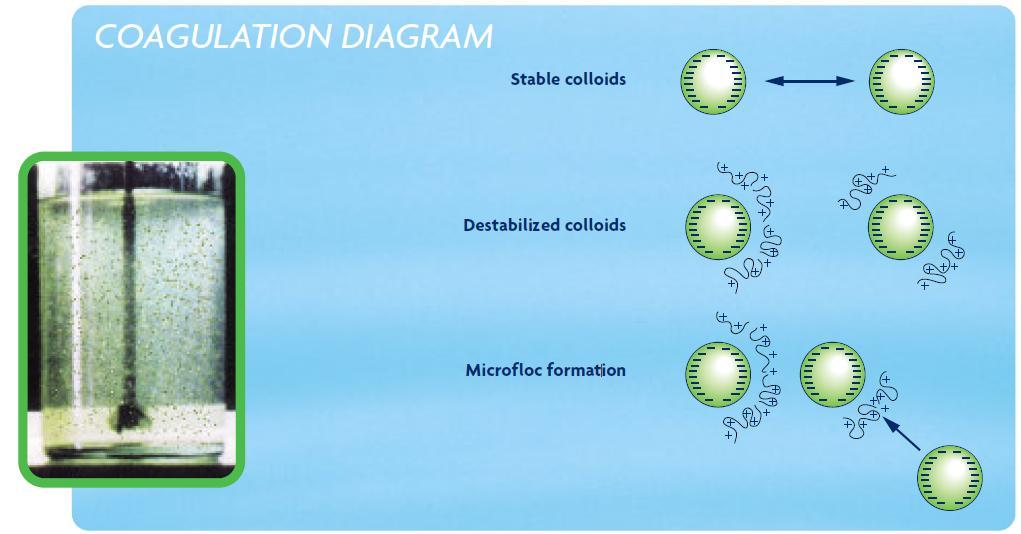 Coagulation Flocculation Sswm