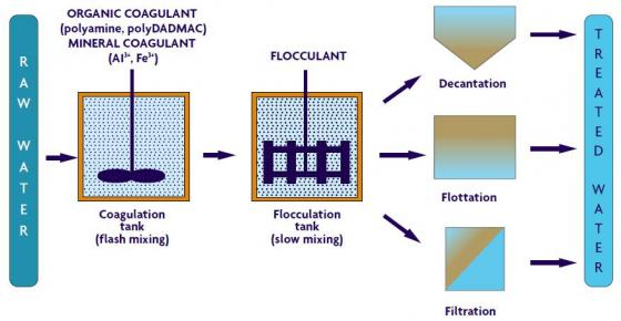Physical-chemical process involved in Coagulation-Flocculation. Source: SNF FLOERGER 2003