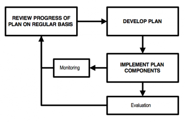 TAYLER et al 2000 Links between planning and implementation